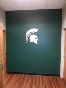 corporate-walls-msu-spartan-helmet-20130320_093202-cc